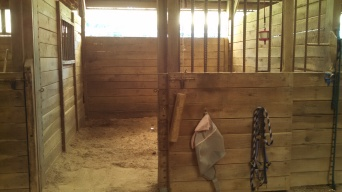 10' x 12' stalls with window